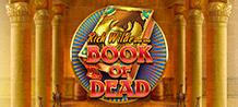 <div>Join the intrepid adventurer archaeologist, Rich Wilde. Look for the legendary Book of the Dead through the ancient tombs and monuments of ancient Egypt. <br/>