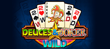 <div>Deuces and Joker is an excellent video poker game for people who like to use their skill and balance it with luck. In the midst of a lot of action, you must chase the 2 and the jokers to get a great victory. <br/>