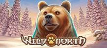 <div>Discover the stunning creatures of the Scandinavian desert in this amazing 5-reel and 40-line Slot. Majestic jungle animals await you for this challenging and magnificent adventure awaiting the Northern Lights which brings incredible combinations of prizes and free rides. <br/>