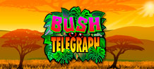 Popular legend has it that ancient communication in the mysterious African interior was through drum beat signals, later known as the bush telegraph for which this game is named. If you enjoy smooth, fast play and thrilling bonuses and reward features, you're going to love this exciting new video slot and it's uniquely African setting that captures the vibrancy, colour and exotic wildlife of the jungle.