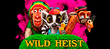 <div>The animals escaped from their cages at the city zoo and are trying to survive the harsh streets of New York. They need money, they need a plan and they need a lot of food and that's where you come into this game. <br/>